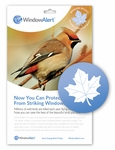 stop birds hitting windows - Maple Leaf decal for windows